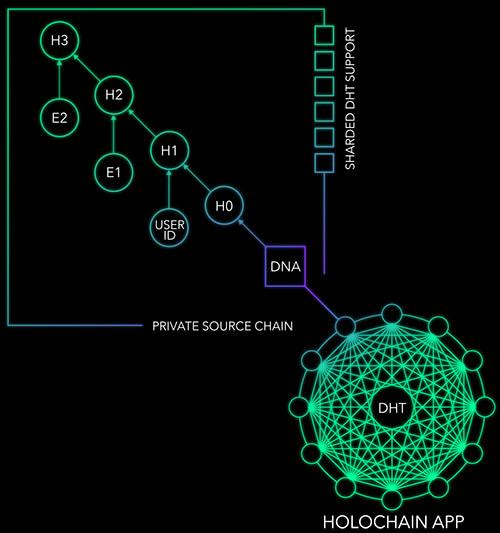 Holochain APP DNA