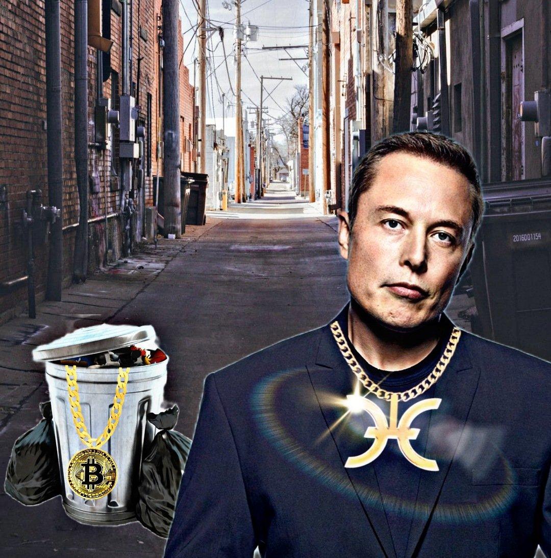 Holo Elon Musk meme
