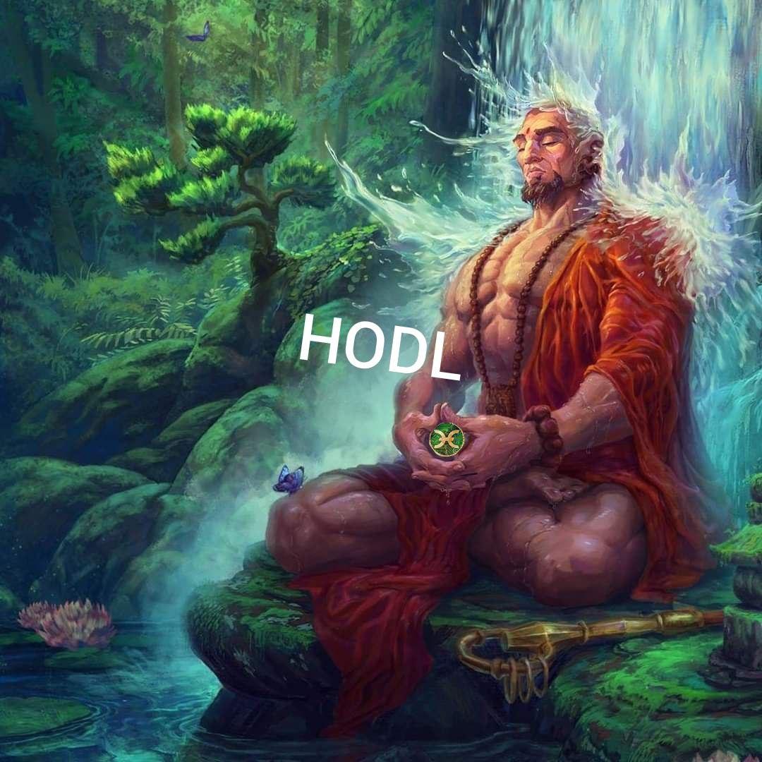 Holo Hodl meme