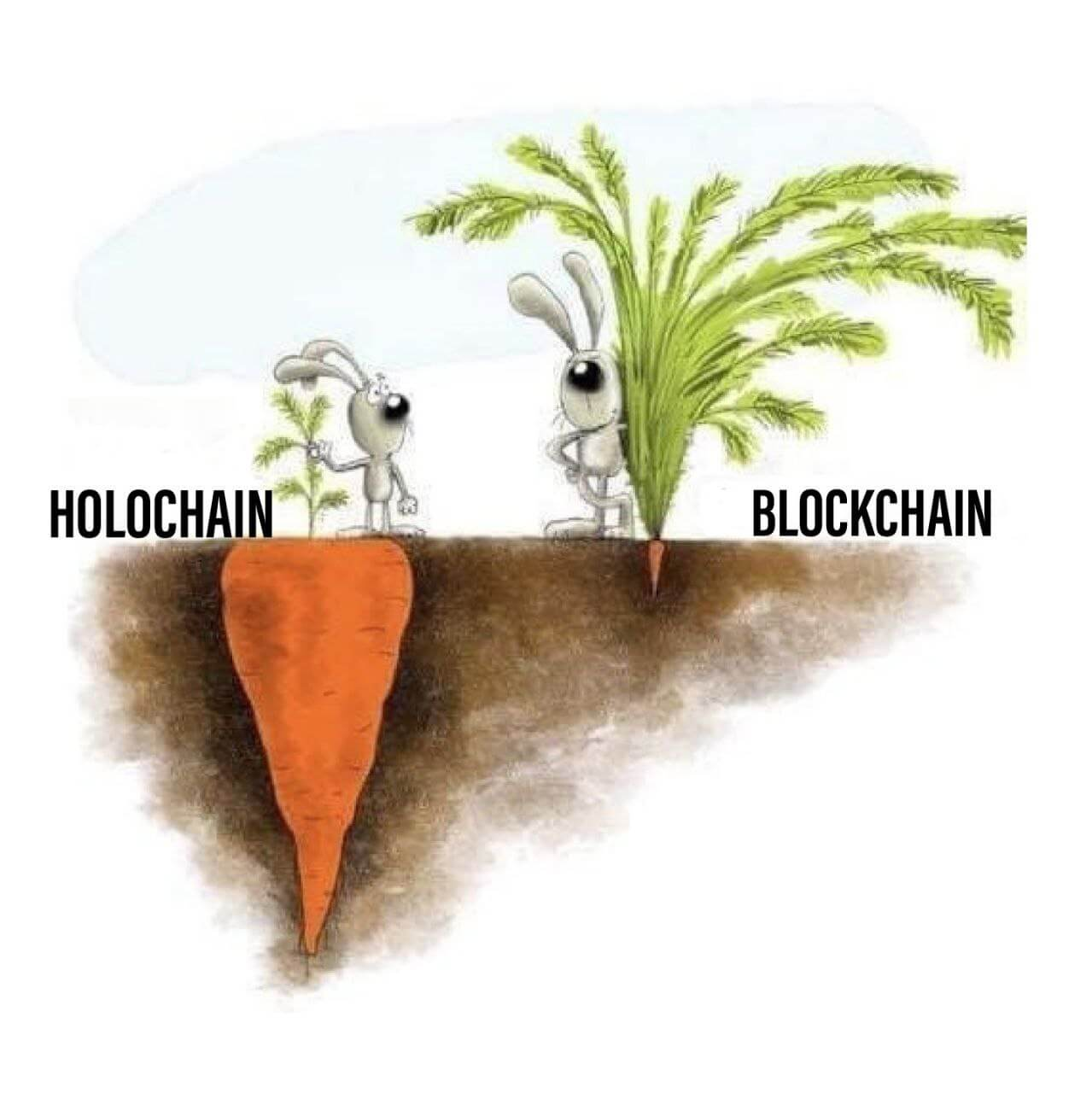 Holochain vs Blockchain meme